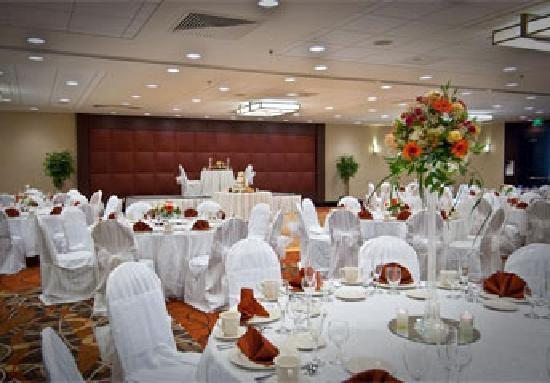 DoubleTree by Hilton Hotel Baltimore - BWI Airport: Wedding Reception