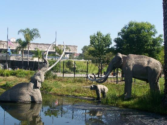La Brea Tar Pits and Museum: Outside the museum