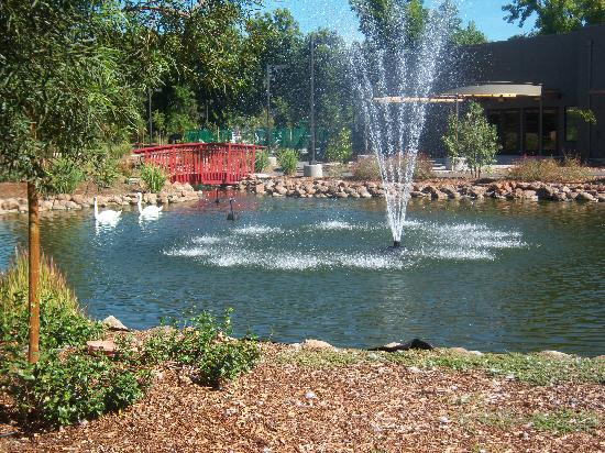 Anderson, CA: Ponds and fountains