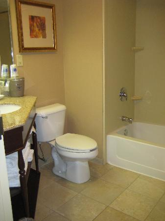 Hampton Inn Buffalo-Airport/Galleria Mall: bathroom