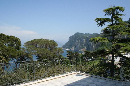 Luxury Villa Excelsior Parco: View from our Terrace