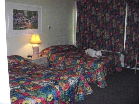 Balmoral Inn: my puppy!