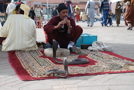 Marrakech de graça