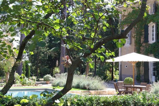 Domaine Saint Hilaire: The swimming pool