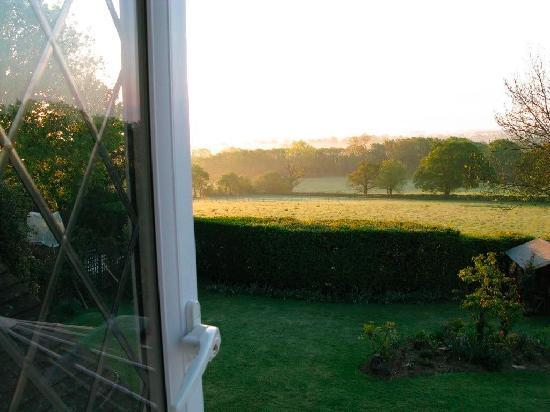 Trumbles Guest Accommodation: Morning View from Room2
