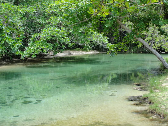 Port Antonio, Giamaica: Frenchman's Cove