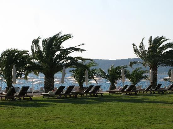 Club Med Palmiye: Our favorite reading place
