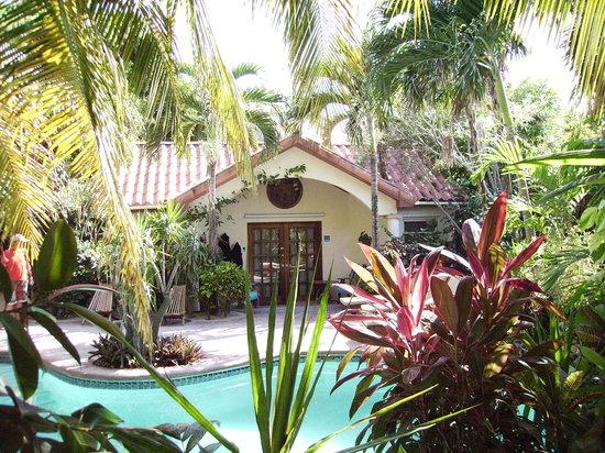 棕榈树海滨套房酒店照片