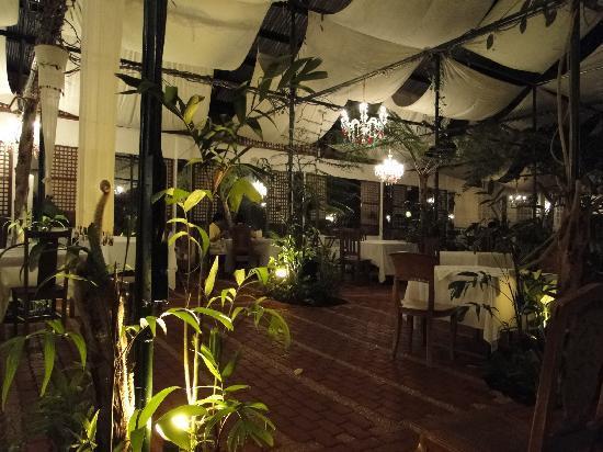 Sonya's Secret Garden: ambiance