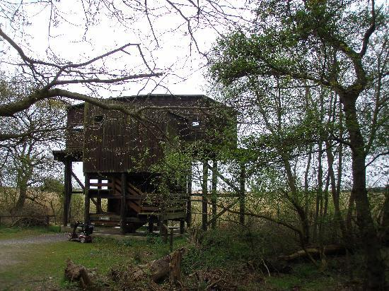 The Eels Foot Inn: Birdwatching hide at nearby Minsmere