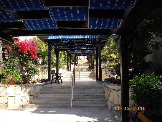 Cactus Mirage Family Club : marche pour descendre au resto piscine et mer