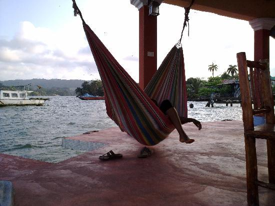 Posada El Delfin: hammocks for guests