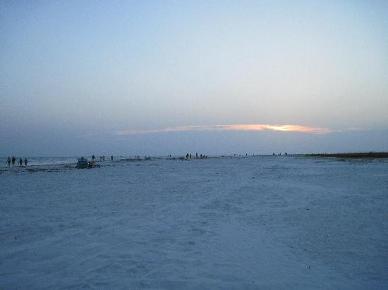 Sea Spray Resort on Siesta Key : Sunset on the beach