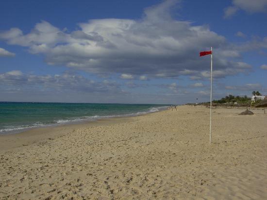 Hotel El Fell : la plage