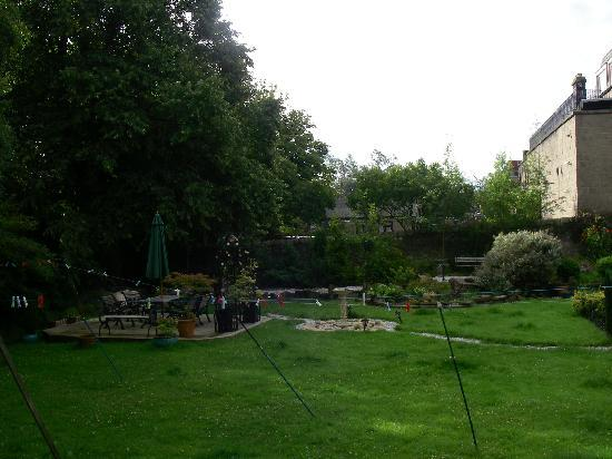 Alba House: The garden