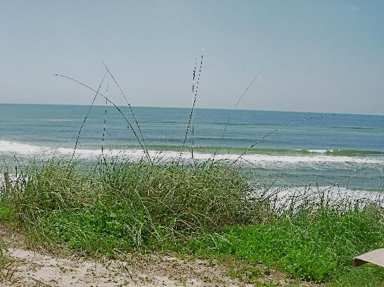 Seagrove Beach, FL: View from the patio south to the gulf