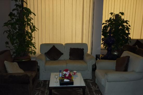 Attawfeek Hotel : Lovely lounge