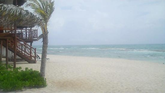 El Dorado Casitas Royale by Karisma: Section of beach in front of Bock 30.