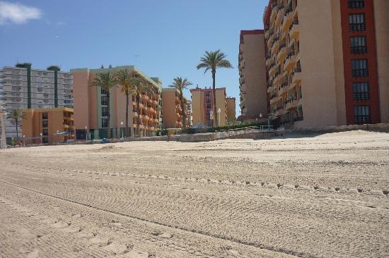 Environnement plage propre photo de aparthotel londres for Apparthotel londres