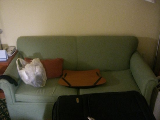 Hampton Inn Augusta - Washington Road: couch