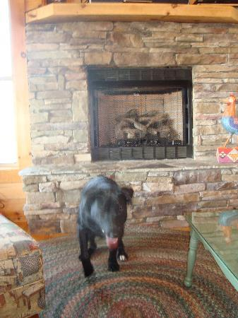 Barkwells, The Dog Lovers' Vacation Retreat: /living room