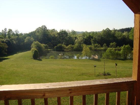 Barkwells, The Dog Lovers' Vacation Retreat: View fm balcony
