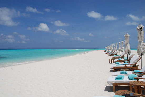 Four Seasons Resort Maldives at Landaa Giraavaru: Blu Beach