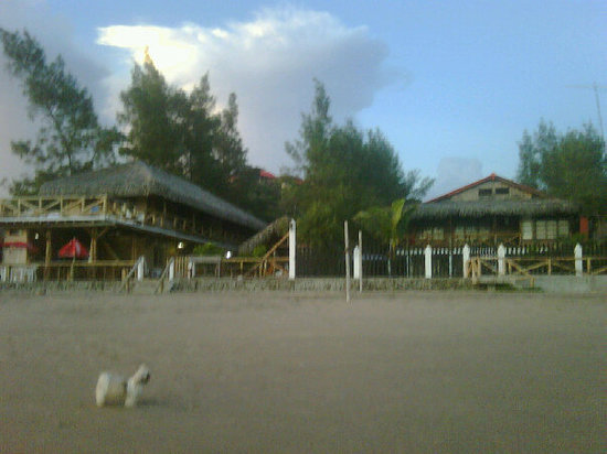 Hanga Roa Hostal: hangaroa 59399420752