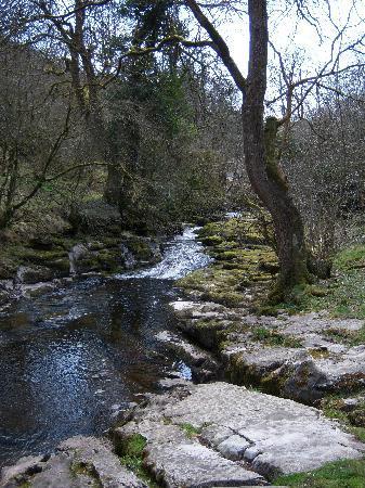 Графство Мертир-Тидвил, UK: Taf Fechan Nature Reserve