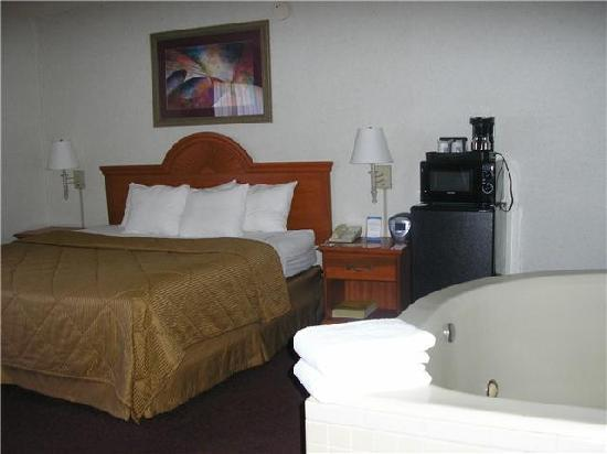 Comfort Inn University Center: The bed was big and comfy