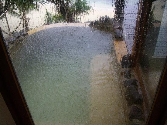 Royal Davui Island Resort: The plunge pool