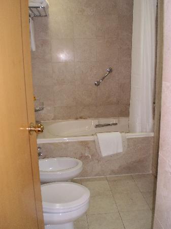 Crowne Plaza Hotel Abu Dhabi: bath