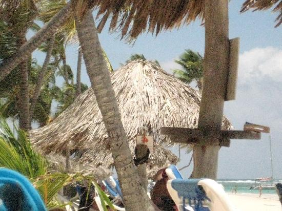 VIK Hotel Cayena Beach: Beach