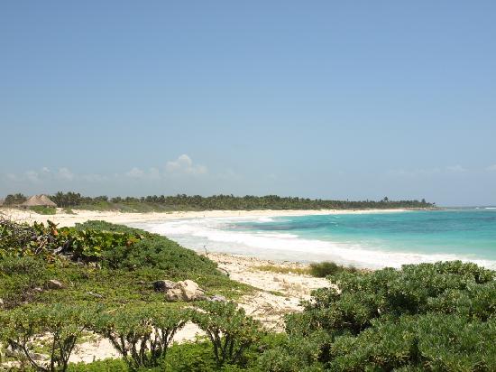 Secret Garden Hotel : Xcacel beach. Ask Sean where it is.