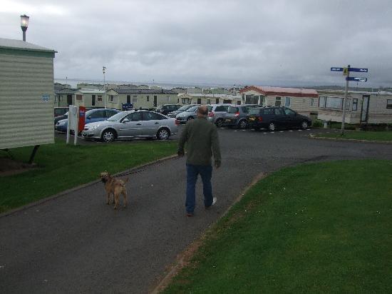Berwick Dog Park