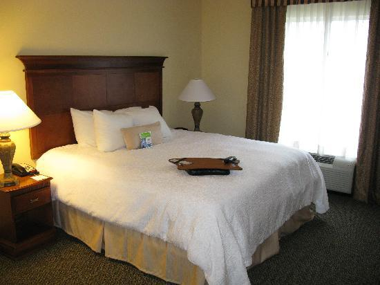 Hampton Inn & Suites Birmingham-Hoover-Galleria : Comfortable king bed