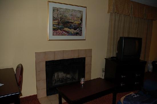 Hawthorn Suites by Wyndham Dayton North: Fireplace
