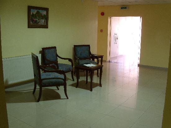 Mosaic City Hotel: Hall