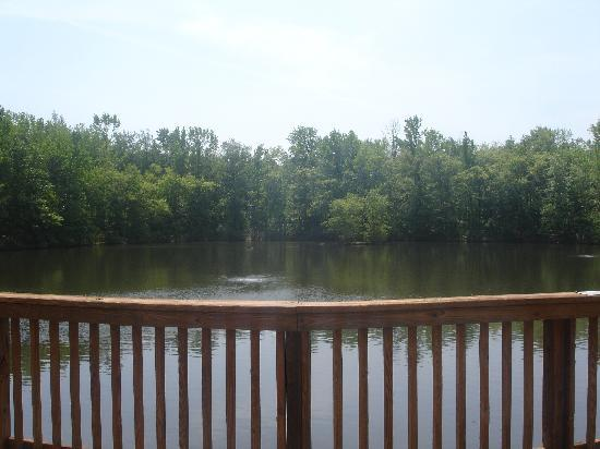 Three Lakes Nature Center and Aquarium: Lake 2's view from deck