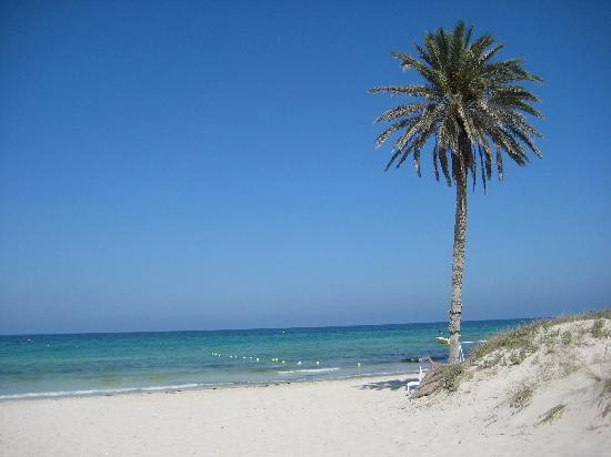 Radisson Blu Palace Resort & Thalasso, Djerba: plages des familles,