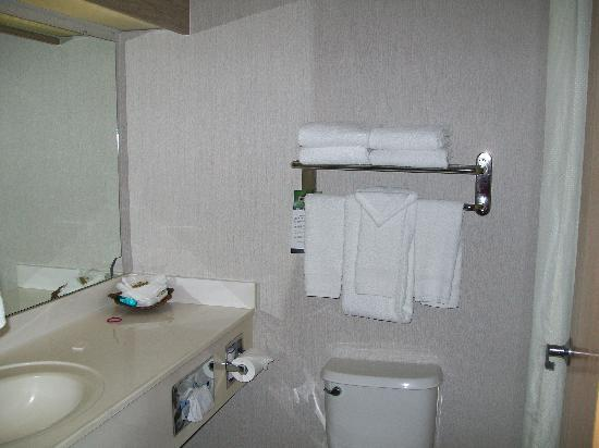 Very small bathrooms picture of best western plus dfw for Very small baths for small bathrooms