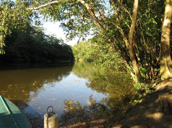 Table Rock Jungle Lodge: Macal River canoe dock and swimming area