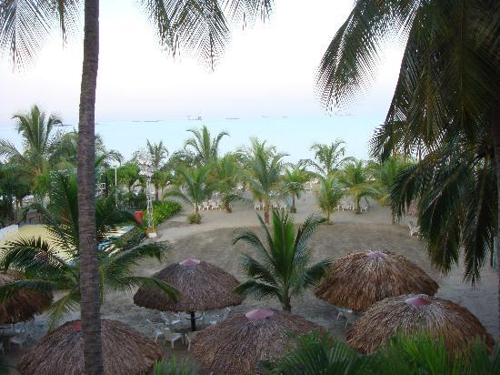 Decameron Galeon: Buena vista desde los caminos del hotel