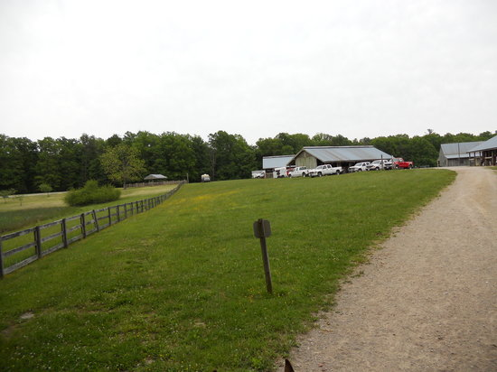 Bandy Creek Campgrounds: one of the horse barns