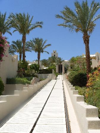 Four Seasons Resort Sharm El Sheikh: the train!