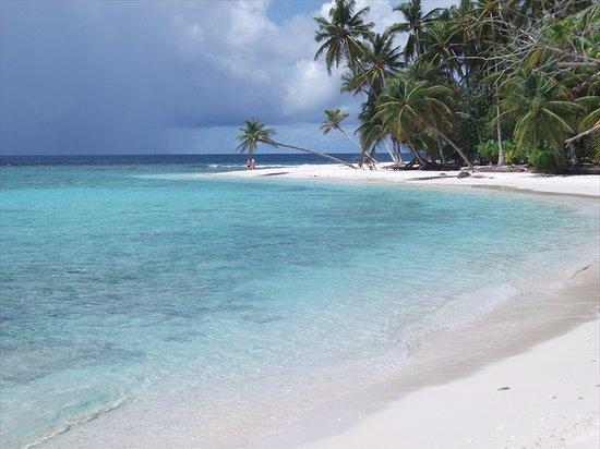 Filitheyo Island Resort: Obligatory tropical palm tree and beach shot