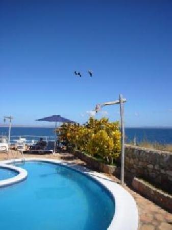 Posada Exclusiva Turpialito: Vue depuis la piscine