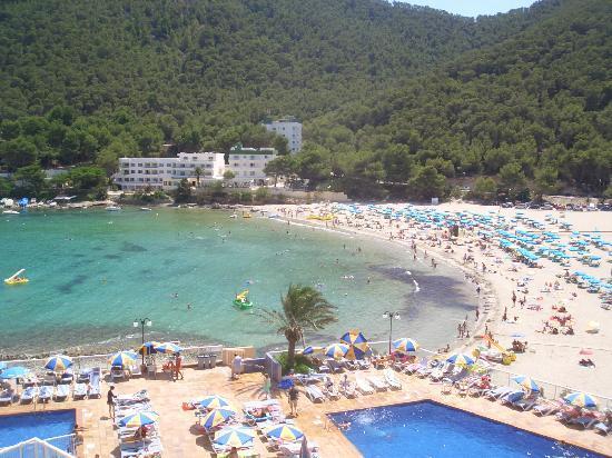 Sirenis cala llonga resort pool picture of sirenis cala llonga - Buffet Picture Of Sirenis Cala Llonga Resort Cala