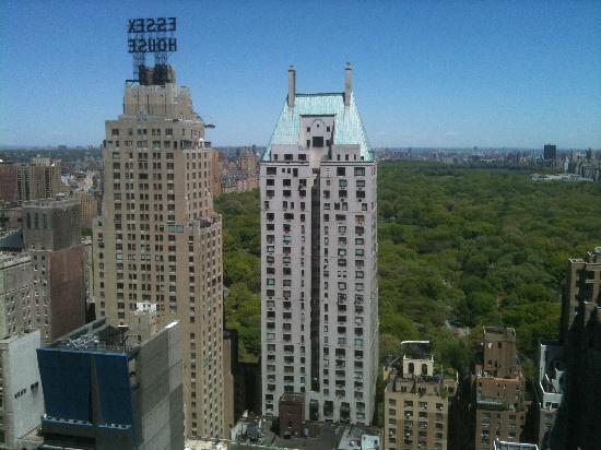 roof top foto di le parker meridien new york new york. Black Bedroom Furniture Sets. Home Design Ideas