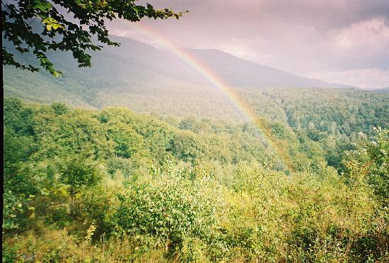 Primeval Beech Forests of the Carpathians, Ukraine: rainbow above Stuzhytsa primeval forest (Ukraine)